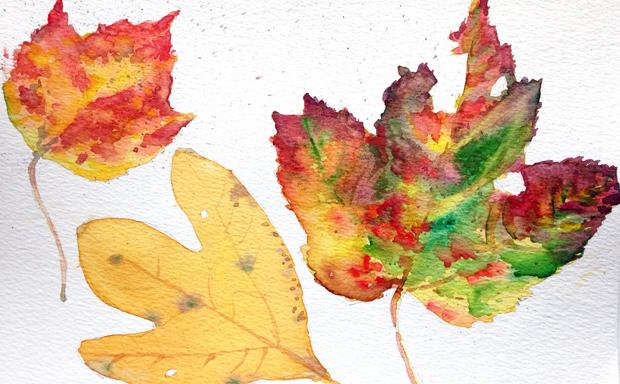 2014_10.18_Leaves