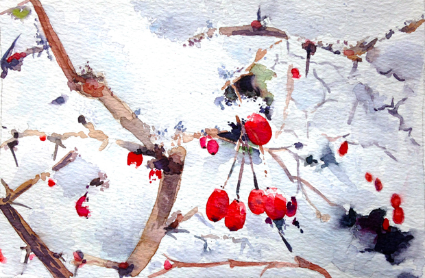 1.22.15_snow-berries_620w
