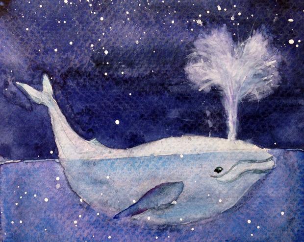 11.11.15_whale_620w