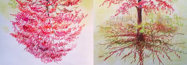 11.24.15_Tree-composite