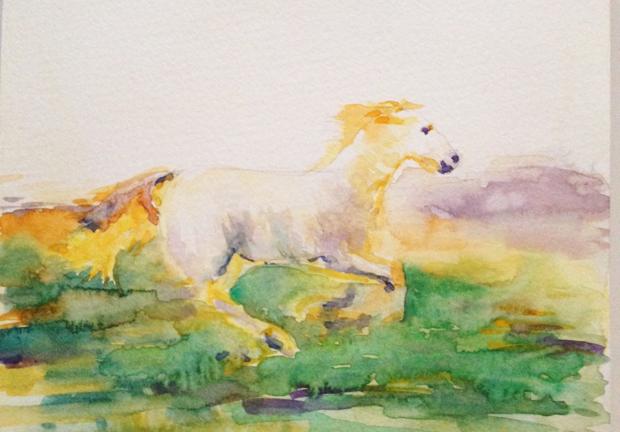 11.7.15_Horse_620w